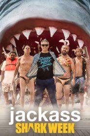 Jackass kontra rekiny cały film