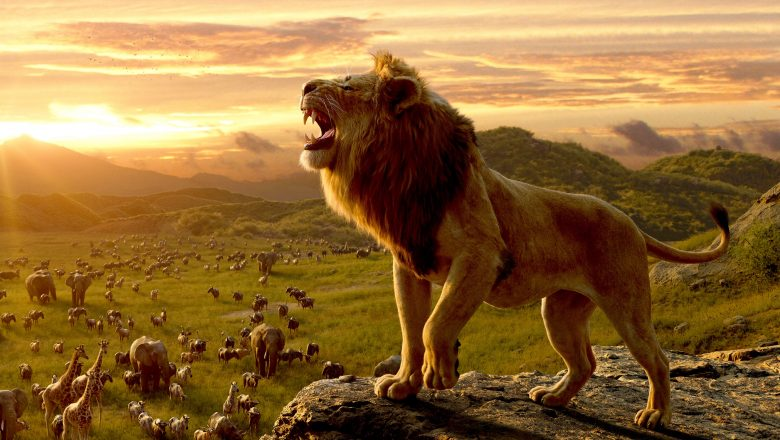 Król lew zalukaj