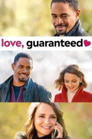 Miłość gwarantowana cały film